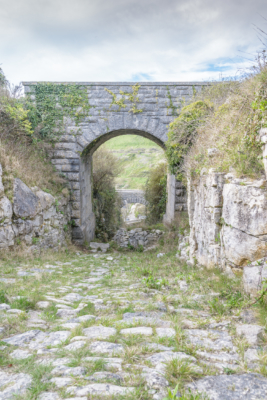 Portland-road-bridge-on-New-Ground-over-old-stone-cart-track-19_04_15