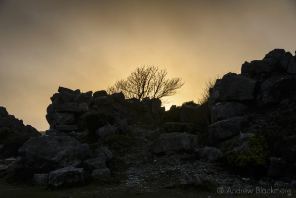 Portland-sunset-with-tree-from-inside-Tout-Quarry-21_02_16