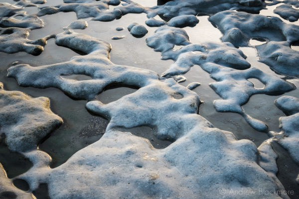 Rock-pools-on-Monmouth-Beach,-Lyme-Regis-08_02_15-3