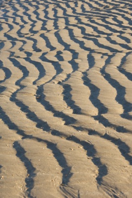 Sand-ripples-Charmouth-beach-10_11_10-1