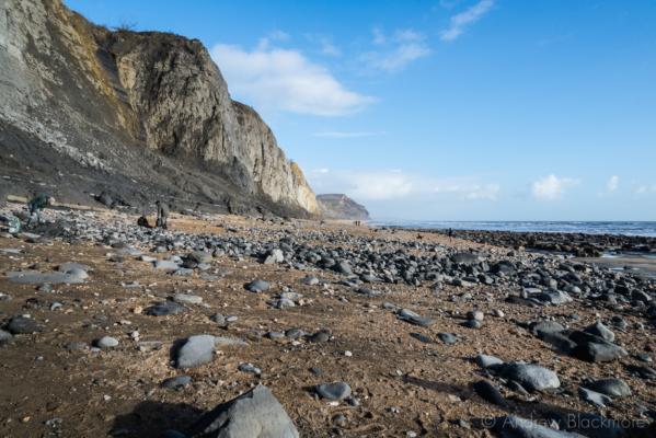 Stonebarrow-cliffs-&-Golden-Cap Charmouth-02_02_14