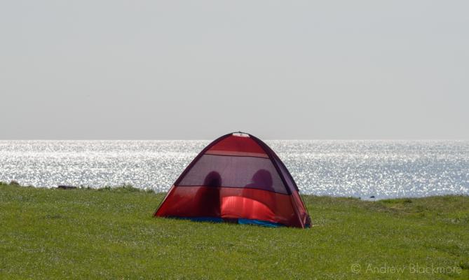 Sunlight-through-a-tent-Nr.-Charmouth-Beach-05-09-12-crop