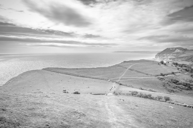 The-SW-Coast-Path-on-Doghouse-Hill-with-Golden-Cap-beyond-12_04_15-b&w