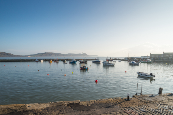The-harbour-and-coast-view,-Lyme-Regis-09_11_14