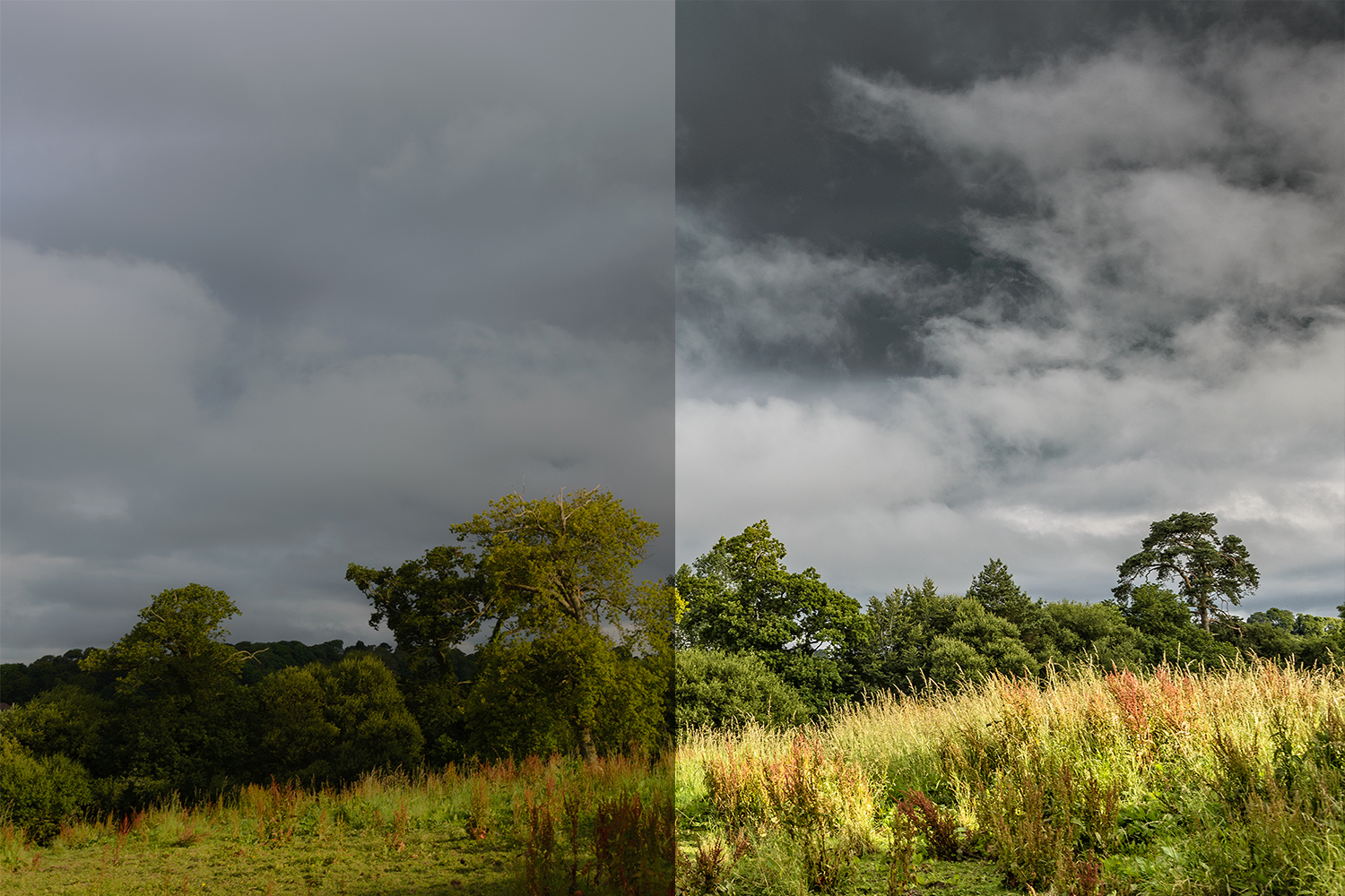 Abp Optimised Image Landscape