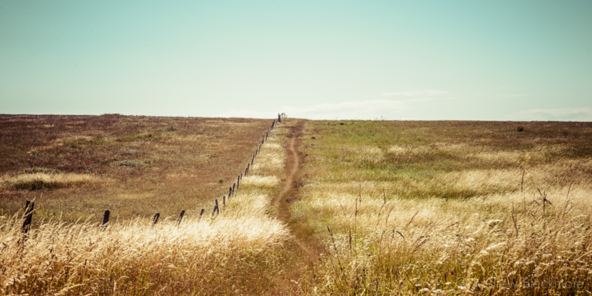 Portland-old-footpath-through-the-fields-between-West-Cliff-and-Sweet-Hill-19_07_15-pan-v2