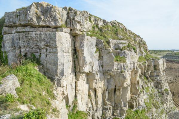 Portland-rock-face-in-Admiralty-Quarry-10_05_15