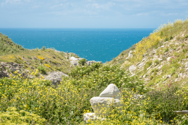 Portland-sea-view-from-Tout-Quarry-06_06_15