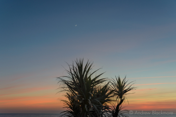 Portland-sunset-and-new-moon-from-Cove-Cottages-(with-palm)-22_03_15