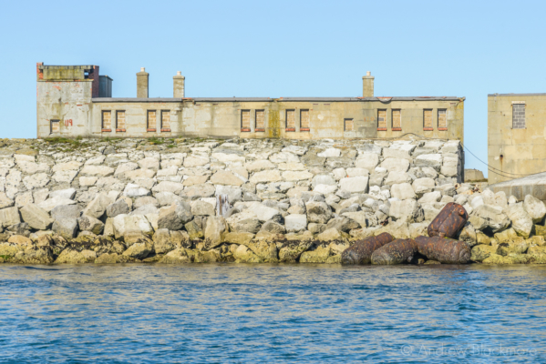 Portland-the-Breakwater-Fort-Napoleonic-canons-and-buildings-from-the-sea-26_08_16-3