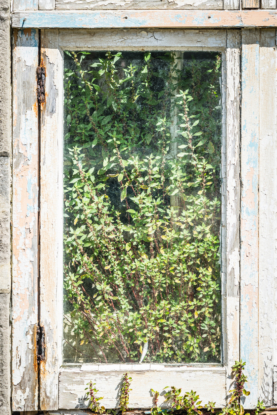 Portland-window-in-derelict-prison-officers-buildings-at-The-Verne-06_07_14-2