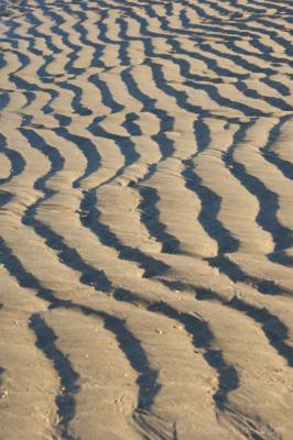 Sand-ripples-Charmouth-beach-10_11_10-1
