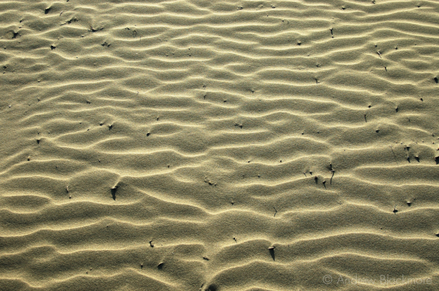 Sand-ripples-Lyme-Beach-24_01_05