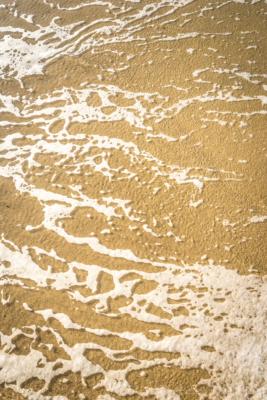 Sea-foam-on-Main-Beach,-Lyme-Regis-09_11_14
