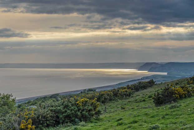 Sunlight-on-the-sea-with-Golden-Cap-from-the-coast-road-between-Abbotsbury-and-Burton-Bradstock-25_05_15-2