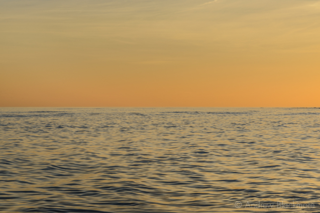 Sunset-sky-and-sea-from-Monmouth-Beach,-Lyme-Regis-08_02_15
