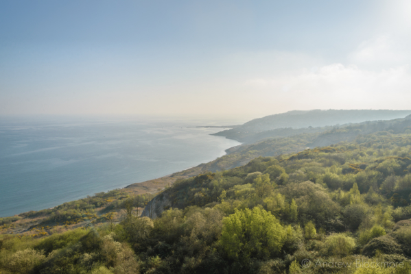 The-Spittles-with-Lyme-Regis-beyond-from-Timber-Hill-cliffs-07_04_17