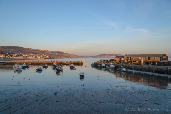 The-harbour-and-town-from-the-Cobb,-Lyme-Regis-29_12_14